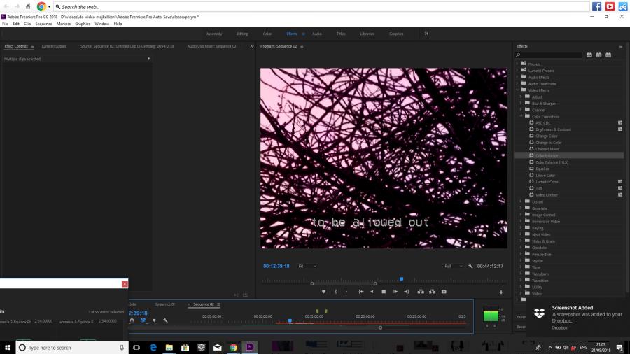 Screenshot 2018-05-21 21.03.09.png